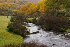 Cantalojas GUADALAJARA  Hayedo de Tejera Negra Nature Reserve