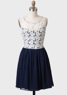 Post Script Lace Detail Dress