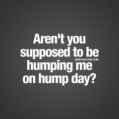 Fun and naughty sex quotes from Kinky Quotes for him and her! Enjoy all our fantastic naughty quotes and sayings right here! Hump Day Quotes, Hump Day Humor, Sex Quotes, Funny Flirty Quotes, Naughty Quotes, Funny Quotes, Flirty Memes, Romantic Quotes For Wife, Shade Quotes