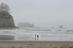 bad weather - fog