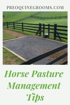 Some tried and true tips to keep your pastures healthy and strong for your horses. Pasture management starts with proper care, mowing, rotation, and manure picking. Horse Paddock, Horse Stables, Horse Farms, Horse Riding Tips, Horse Tips, Horse Water Trough, Dressage, Horse Grooming, Barrel Horse