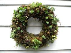 Really excellent instructions for the succulent/living wreath.