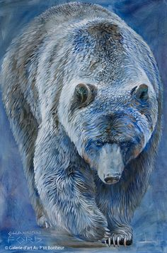Shannon Ford, 'Gorgeous Grizzly', x Bear Paintings, Wildlife Paintings, Wildlife Art, Majestic Animals, Animals Beautiful, Ours Grizzly, Art D'ours, Urso Bear, Art Gallery