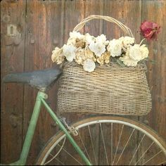 Vintage Bikes, Basket, and Flowers. LOVE