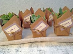 I created some simple party favors for a friend's baby shower last weekend, which doubled as place cards. I ordered the mini succulents from The Succulent Source, which has incredible customer serv...