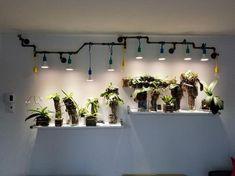 Indoor Plant Lights, Grow Lights For Plants, Plant Lighting, Led Grow Lights, Indoor Plants, Room With Plants, House Plants Decor, Plant Decor, Ikea Plants