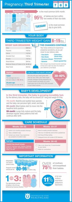 Pregnancy: Third Trimester Infographic from University of Utah Health Care Pregnancy Facts, Pregnancy Labor, Trimesters Of Pregnancy, Pregnancy Health, Weeks Of Pregnancy, Pregnancy Journal, Pregnancy Guide, Getting Ready For Baby, Preparing For Baby