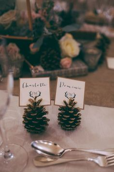 Pine cone place cards are a really simple rustic decoration that transforms your table. Perfect for autumn or winter weddings, pine cones are cheap and easy for guests to take away as wedding favours too. Click through for 50 more free wedding ideas. Fall Wedding Centerpieces, Winter Wedding Decorations, Winter Weddings, Winter Table Centerpieces, Centerpiece Ideas, Fall Wedding Table Decor, Christmas Wedding Decorations, Quinceanera Centerpieces, Centerpiece Flowers