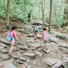 Top 10 Family-Friendly Hikes Near Loudoun County Virginia – Toddlin' Across America Loudoun County Virginia, Weekend Hiking, Leesburg Va, Hiking Spots, National Cemetery, Local Photographers, Fish Ponds, Northern Virginia, Nice View