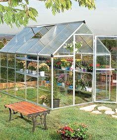 Poly-Tex Silver 10 x 6 Greenhouse   zulily
