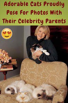 #Adorable #Cats #Proudly #Pose #Photos #Celebrity #Parents