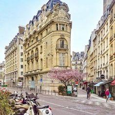 Springtime in Paris by Zedd Paris.