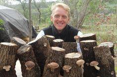 100th Monkey Mushroom Farm: Spreading Fungal Enthusiasm and Combatting Mycophobia One Mushroom Kit at a Time