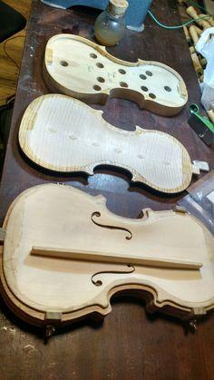Tres partes del violín: Fajas (Todavía en su molde), fondo y tapa armónica