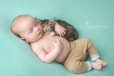 8 week old baby boy and 8 week old kitten snuggling aqua tan calico cat | Bella Rose Portraits newborn and baby photographer Springfield, VA