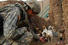 The face of the one pup to the right speaks wonders :) such a sweet gesture