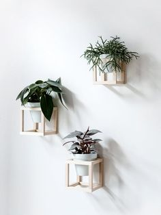 12 DIY Hanging Planters to Make | Apartment Therapy