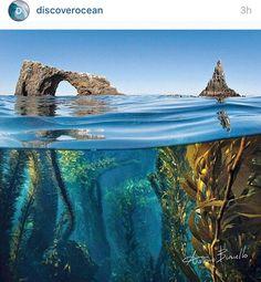 Chanel Islands National Park, CA