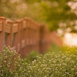 Path to Enlightenment by John on Flickr