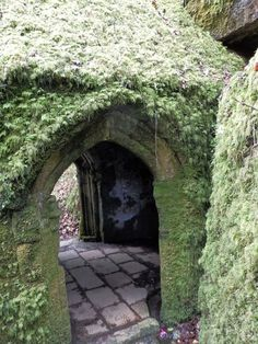 The Secret Holy Well Of Menacuddle, Cornwall And The Druid's Chair