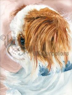 Birdcage Dog is an Open Edition Giclee Art Print from a watercolor featuring a Red and White Japanese Chin Dog. The Japanese Chin, once called the