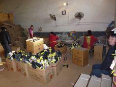 Dunpai fireworks factory workers  packing reloadable Artillery.