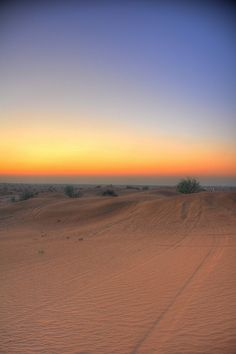 Desert of Dubai, UAE