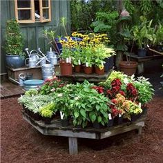 How To Create a Vegetable Container Garden