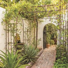The side yard connects to the front patio through an arched opening. Here, a metal arbor with purple snail vines helps shade the sunny spot. #phgmag #SouthwestLiving