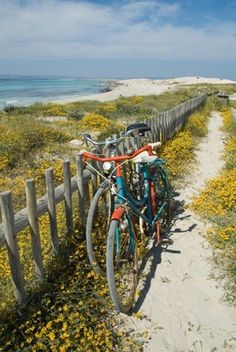 Take me away please...Formentera Spain
