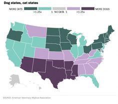 US: Cat states vs Dog States