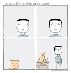 The Cat's been staring at me weird by poorly drawn lines