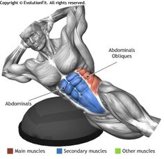 OBLIQUE CRUNCHES ON BOSU - The exercise strengthens the side muscles (the oblique muscles and the transversus abdominis) of the trunk. Bosu Workout, Best Ab Workout, Cardio, Ab Workouts, Fitness Nutrition, Fitness Tips, Fitness Motivation, Best Bodybuilding Program, Abdominal Exercises
