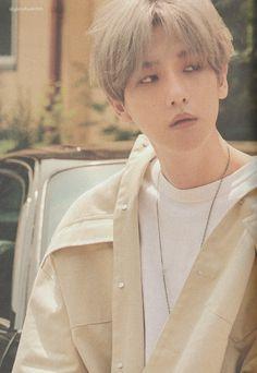 Sehun, Exo Chen, Baekhyun Wallpaper, Exo Concert, Exo Lockscreen, Bts And Exo, Chanbaek, Kpop, City Lights