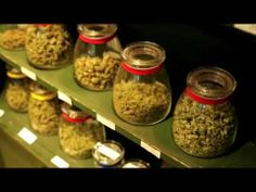 What's it like to visit one of Denver's pot shops? Let Bobby Black show you...The HIGH TIMES US Cannabis Cup Freedom Trail