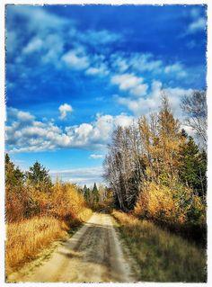 Fall hunting scene from Roseau Mn.