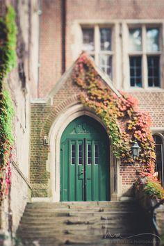 door photograph, climbing ivy leaves green door autumn wellesley college nostalgic nature new england fall large wall art home decor