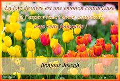 Bonjour Joseph - Joliecarte.com