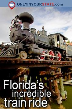 Printing Videos Fabric Fashion Solo Travel Destinations First Time Florida Vacation Spots, Places In Florida, Florida Travel, Florida Trips, Florida Usa, Vacation Ideas, Train Travel, Solo Travel, Travel Usa