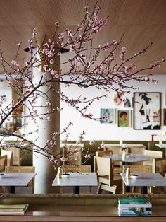 Bills Restaurant at Bondi Beach by Meacham Nockles McQualter   Yellowtrace