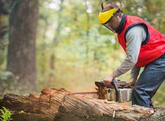 Workplace injuries can happen in any job, but there are certain occupations that have a higher risk of injury. Work Related Injuries, Types Of Work, Chainsaw, Being Used, Royalty Free Images, Outdoor Power Equipment, Industrial, Stock Photos, Workplace