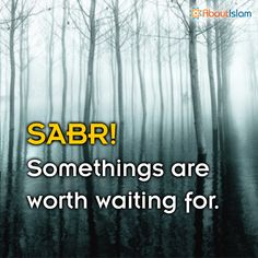 Have Sabr! (patience!) #Patience #IslamicBehaviour #Islam