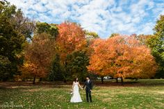 Image result for prospect park weddings picnic house