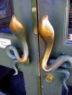 Fort Worth Zoo Reptile House Door
