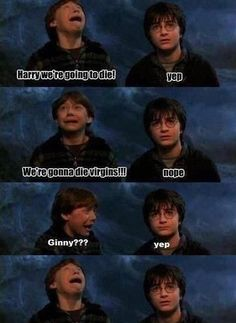 Here we have a collection of Harry Potter memes.These memes will always make you laugh.Some are hilarious about Voldemort character. Memes Do Harry Potter, Harry Potter Ships, Harry Potter Universal, Harry Potter Fandom, Drarry, Dramione, Harry Draco, Harry And Ginny, Draco Malfoy
