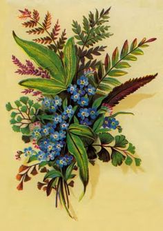 Flores Antigas
