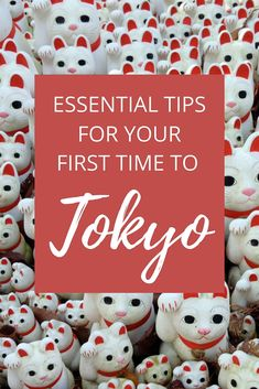 Here are ten things to know before you travel to Tokyo, Japan! #traveltips #japantravel