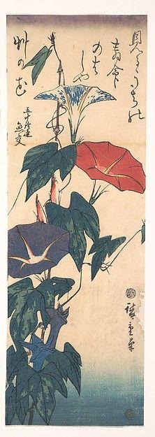 歌川広重画 Morning Glories with Poem by Gyōkō by Utagawa Hiroschige, ca 1843 woodblock print from the collection of @metmuseum