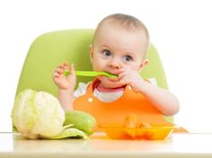 Weaning Food Recipe ( 10 to 12 months) - www.babychakra.com