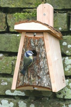 Adding a natural element to the design of my NestBOX would be a great way for the nesting boxes to blend in with the environment as well as giving the birds something to climb on and sink their claws into, almost like they are nesting in trees!
